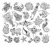 Vector Silhouettes Of Marine Life. Black And White Decorative Inhabitants Of The Ocean. Stencils. Patterns For Coloring.