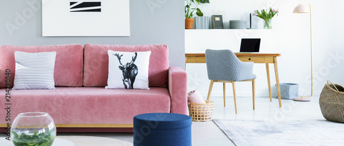 Fotografia  Pink, velvet sofa in a creative living room and workspace interior and a bright