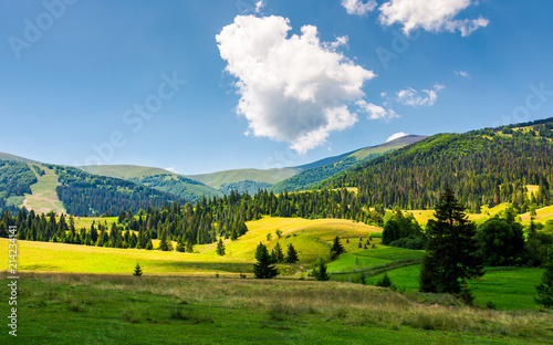 Spoed Foto op Canvas Nieuw Zeeland beautiful rural scenery in mountains. haystack on the grassy agricultural fields among the spruce forest on the hills