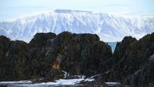 Seaweed Covered Rocks, Water S...