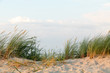 dunes at north sea germany sunset