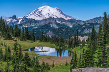 Tipsoo Lake At Mount Rainier N...