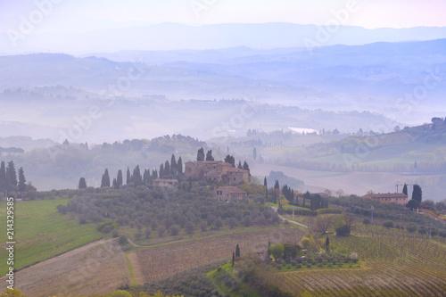 Foto op Aluminium Cappuccino Typical Tuscan landscape