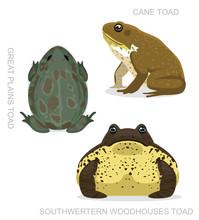 Toad Cane Set Cartoon Vector I...