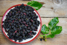 Fruits Of Mulberry.
