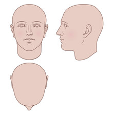 Hand Drawn Androgynous, Gender-neutral Human Head In Face, Profile And Top Views. Flat Vector Isolated On White Background. The Drawings Can Be Used Independently Of Each Other.