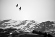 mountain panorama with bird flight