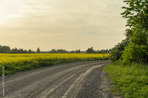 Tuinposter Honing simple country road in summer