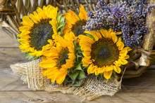 Sunflowers And Lavender In A B...