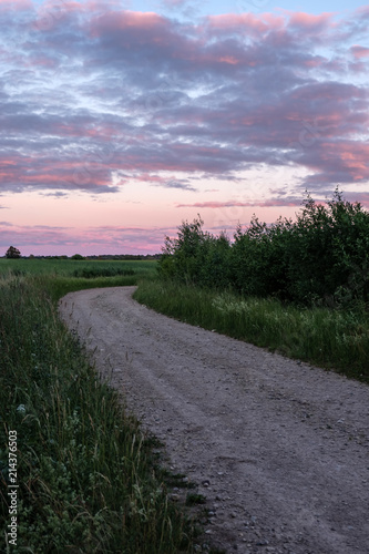 Spoed Foto op Canvas Lavendel simple country road in summer