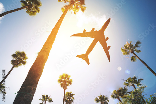 Fotografía  Low angle view of a plane flying in the sky surrounded by palm trees