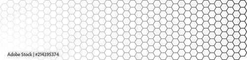 Fotografie, Obraz HEXAGONES dégradé noir et blanc