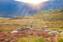 Beautiful Mountain Scenery, Landscape.  Wicklow Mountains National Park, County Wicklow, Ireland