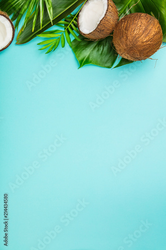 Coconuts and tropical leaves - 214434580