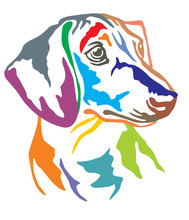 Colorful Decorative Portrait Of Dog Dachshund Vector Illustration