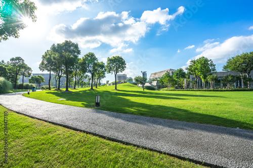 Obraz green lawn with city skyline in the park - fototapety do salonu