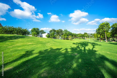 Spoed Foto op Canvas Nieuw Zeeland green lawn with city skyline in the park