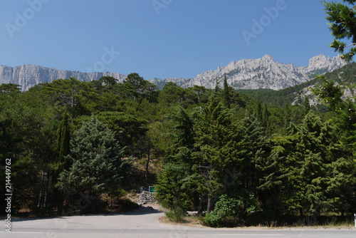 Foto auf Gartenposter Reflexion thick green trees under a blue sky on the background of high steep mountains