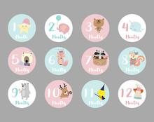 Pastel Baby Number Sticker Wit...