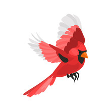 Flying Red Cardinal High Quality Color Icon