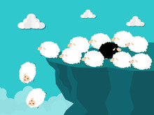 Black Sheep Running Out Of Cli...