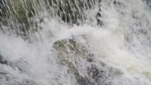 White Mountain Stream Water Falling Down