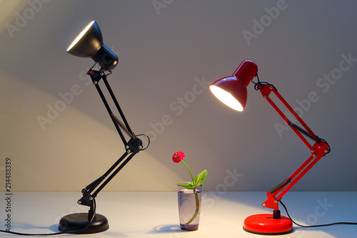 Photo red and black table lamp shining on a red flower and warms with its warmth