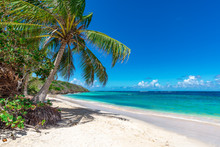 View Of Nice Tropical Beach With Palm Tree. Holiday And Vacation Concept.