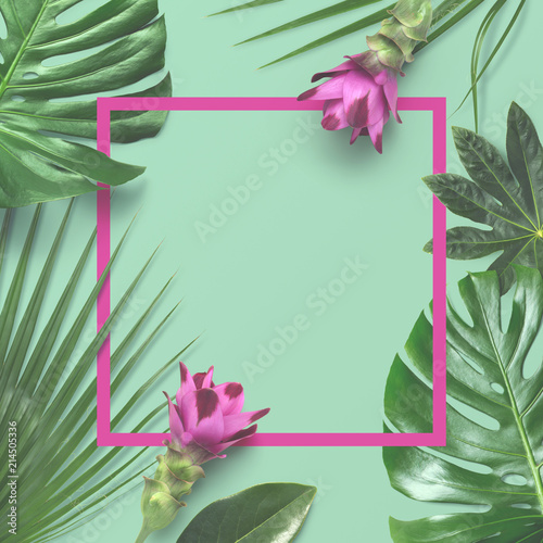 Colorful Creative Tropical Layout With Exotic Plants As A Border Monstera Palm Leaves And Pink Turmeric Flowers On A Turquoise Background Copyspace Matte Overlay Buy This Stock Photo And Explore Large collections of hd transparent tropical leaves png images for free download. colorful creative tropical layout with