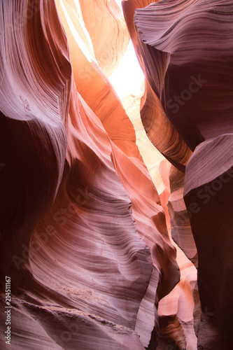Poster Bordeaux Antelope Lower Canyon Samples