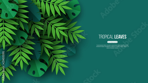 Foto  Exotic jungle tropical palm leaves