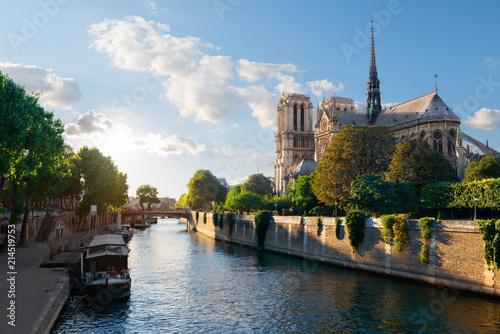 Fotografia Sunlight on Notre Dame