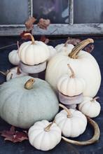 Thanksgiving Or Halloween Autu...