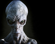 Portrait Of An Alien Male Extr...