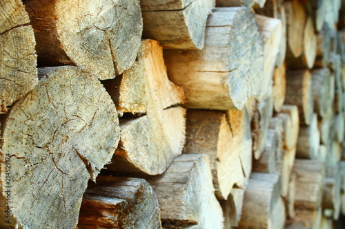 Foto op Aluminium Brandhout textuur A pile of old sawn firewood. Close-up. Background. Texture.