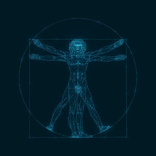The Viturvial Man - Wire Concept