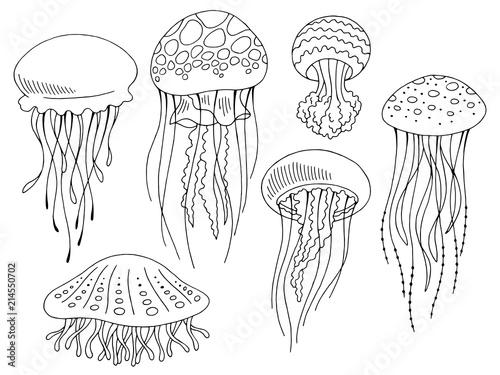 Fototapeta premium Graficzny meduza zestaw czarny biały na białym tle szkic wektor