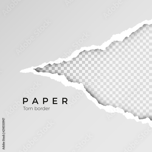 Gray ripped open paper with transparent background Canvas