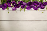 Violet flowers - eustoma, on a white wooden background.