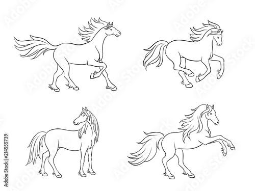 Horses in contours - vector illustration Wallpaper Mural