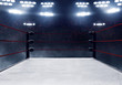 canvas print picture - Professional boxing ring