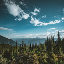 View From Mount Revelstoke Across Forest With Blue Sky And Clouds. British Columbia Canada.