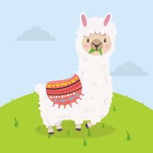 Cute Alpaca Eat Grass Cartoon
