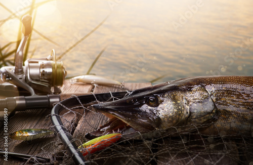 Happy Fishing background; Fishing tackle and trophy Pike