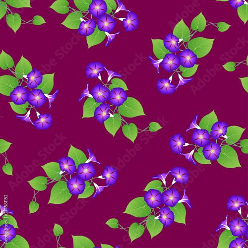 Tuinposter Vlinders Purple Morning Glory on Violet Background.