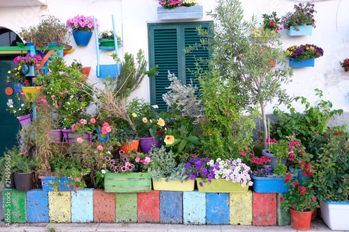 Fototapety, obrazy: Improvised front garden with many flowers near the house on the city street