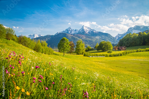 Canvas Prints Landscapes Idyllic mountain scenery in the Alps with blooming meadows in springtime