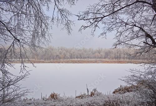 Fotobehang Bleke violet Winter landscape in the city park.