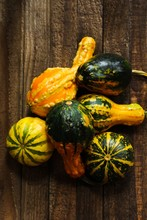 Fall Autumn Background Or Composition With Winter Squashes