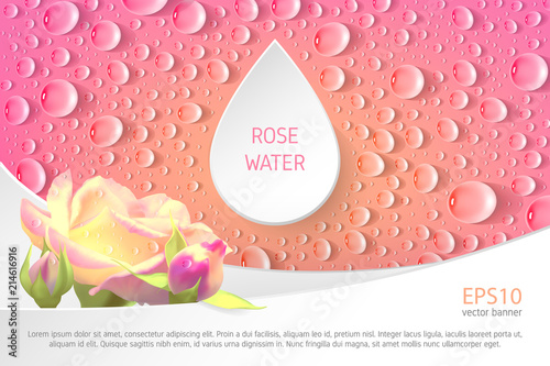 Fotografie, Obraz  Rectangular pink banner with roses and drops